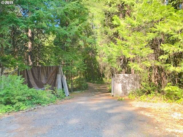91574 Horse Creek Rd, Mckenzie Bridge, OR 97413 (MLS #19088294) :: Premiere Property Group LLC