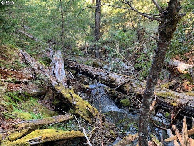 0 Jackson Creek Rd, Grants Pass, OR 97527 (MLS #19119241) :: R&R Properties of Eugene LLC