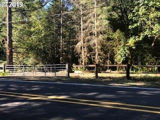 22895 Hwy 36, Cheshire, OR 97419 (MLS #19119881) :: Territory Home Group