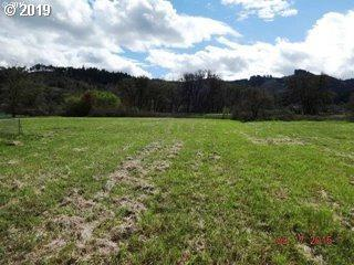 0 Ault Ct #1, Sutherlin, OR 97479 (MLS #19132212) :: Townsend Jarvis Group Real Estate