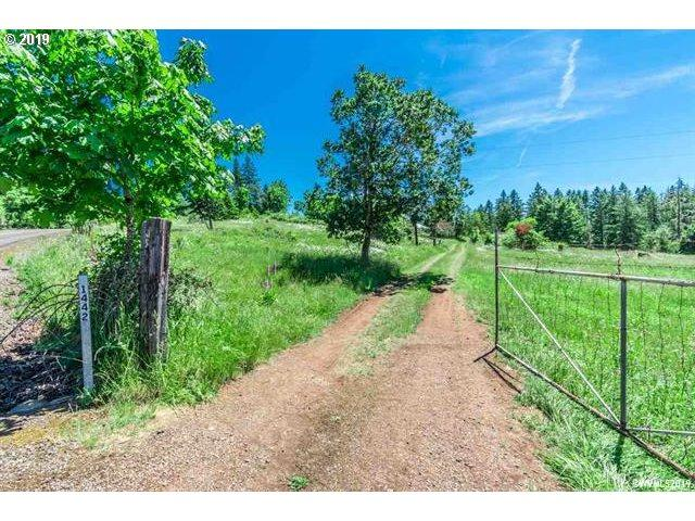 41442 Keel Mountain North Dr, Lebanon, OR 97355 (MLS #19141020) :: Gustavo Group