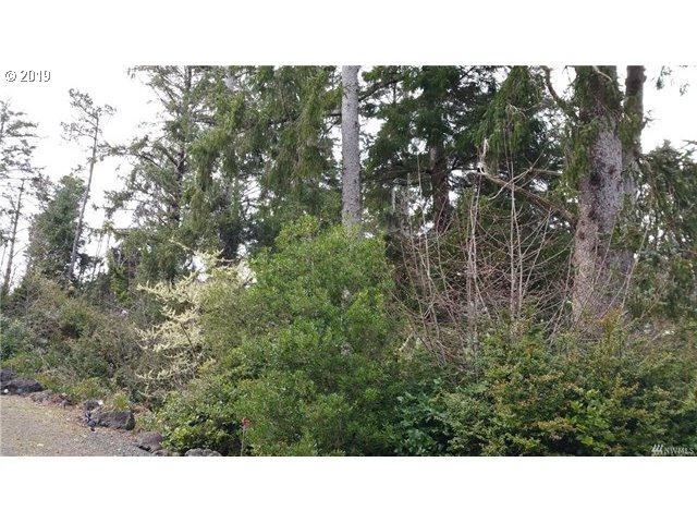 1101 309TH Pl, Ocean Park, WA 98640 (MLS #19163775) :: Song Real Estate