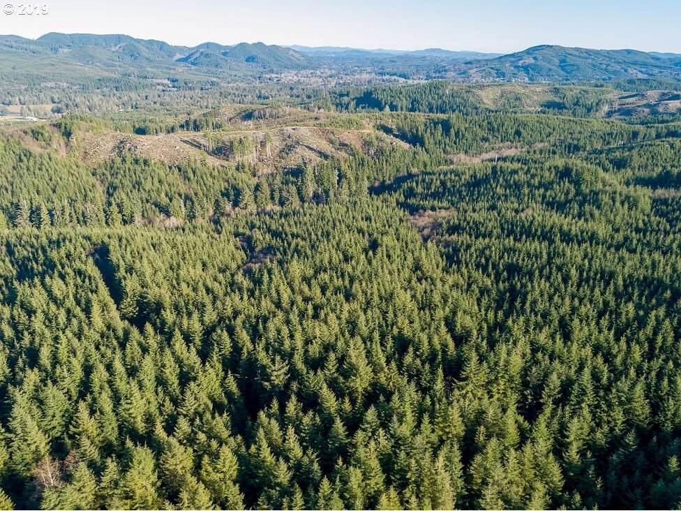 2 Dell Creek Mainline - Photo 1