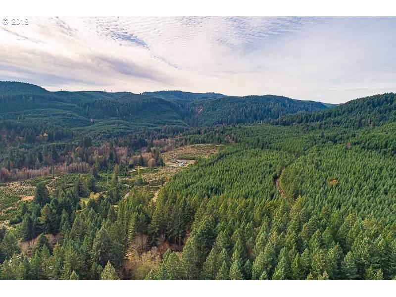 Teal Creek - Photo 1
