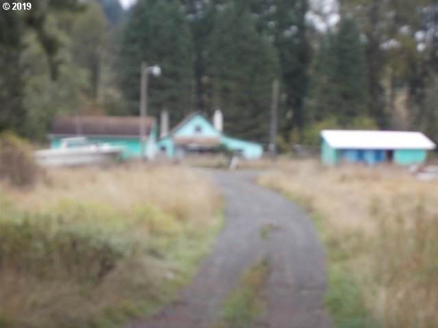 30758 Beaver Homes Rd, Rainier, OR 97048 (MLS #19196497) :: Next Home Realty Connection