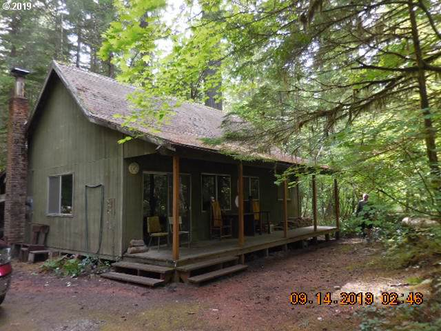 Cabin 61 Northwoods, Cougar, WA 98616 (MLS #19245761) :: Townsend Jarvis Group Real Estate