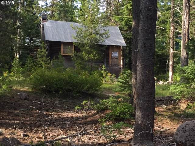 89321 E Steel Ln, Government Camp, OR 97028 (MLS #19254552) :: McKillion Real Estate Group