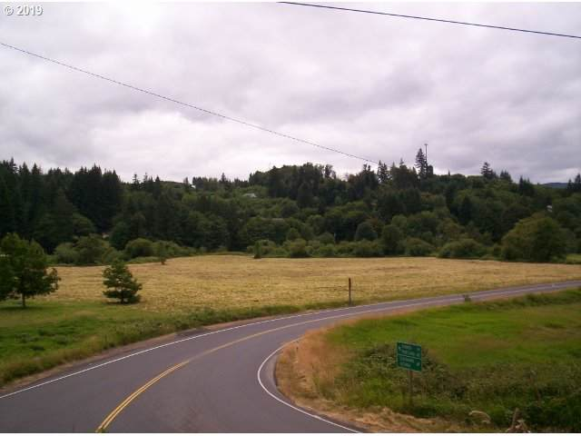 Swedetown Rd, Clatskanie, OR 97016 (MLS #19331893) :: The Lynne Gately Team