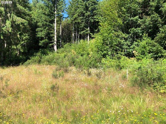 2nd Ave, Vernonia, OR 97064 (MLS #19346006) :: TK Real Estate Group