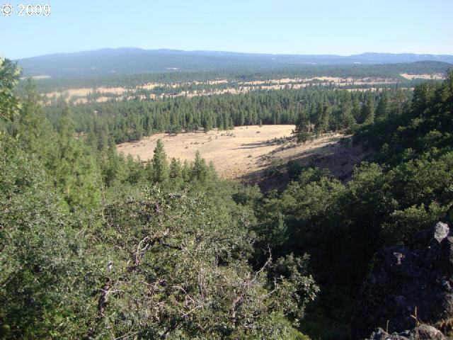 Cragganmore Dr, Goldendale, WA 98620 (MLS #19349115) :: Townsend Jarvis Group Real Estate