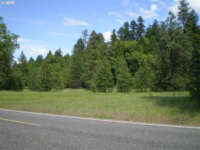0 Dick George Rd, Cave Junction, OR 97523 (MLS #19417000) :: Premiere Property Group LLC