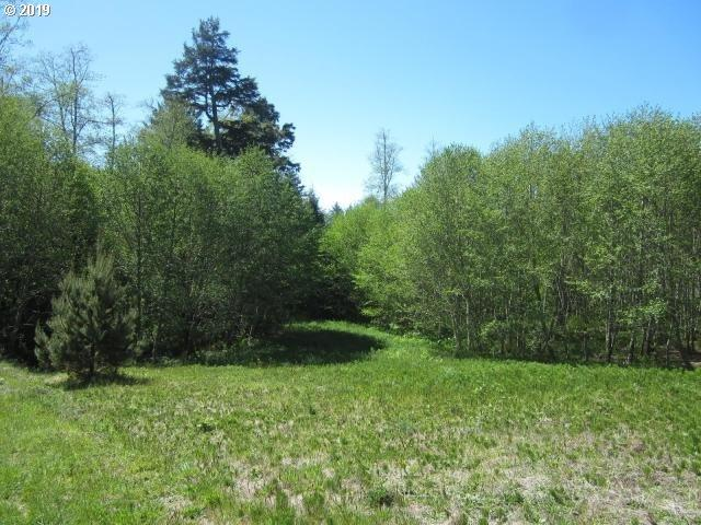 Tl 221 Holly Heights, Netarts, OR 97143 (MLS #19432451) :: Cano Real Estate