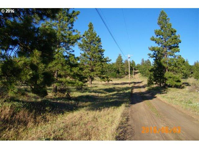 Woodland Rd #9, Goldendale, WA 98620 (MLS #19457753) :: McKillion Real Estate Group