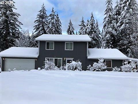 2041 North Fork Rd, Washougal, WA 98671 (MLS #19463367) :: Song Real Estate