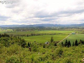 84247 Cloverdale Rd, Creswell, OR 97426 (MLS #19479207) :: The Galand Haas Real Estate Team
