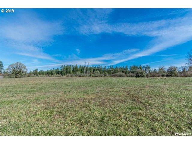 Ede Rd, Lebanon, OR 97355 (MLS #19512982) :: Portland Lifestyle Team