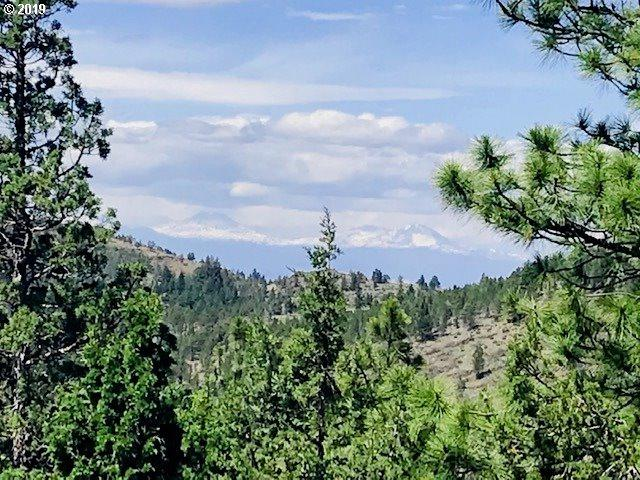 8680 NE Johnson Creek Rd NE, Prineville, OR 97754 (MLS #19535903) :: Gustavo Group