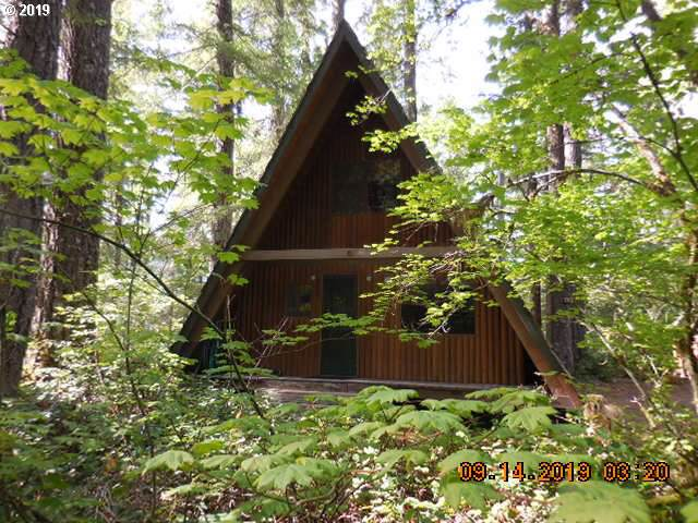 Cabin 75 Northwoods, Cougar, WA 98616 (MLS #19540178) :: Townsend Jarvis Group Real Estate