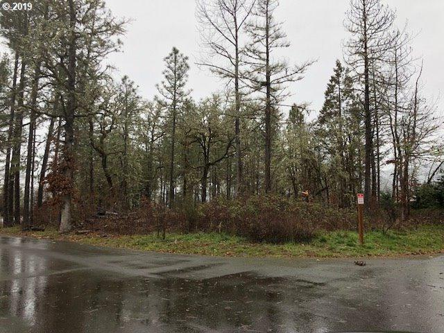 Rigdon Dr, Oakridge, OR 97463 (MLS #19545570) :: R&R Properties of Eugene LLC