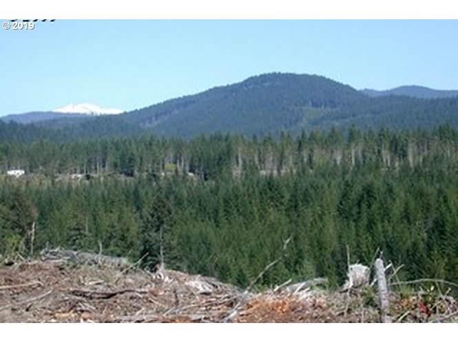 Pine Boulder - Photo 1