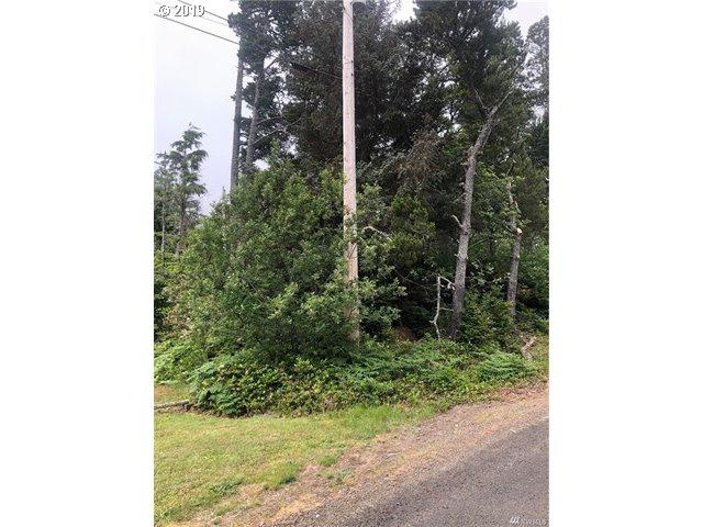 930 282nd Pl, Ocean Park, WA 98640 (MLS #19548113) :: R&R Properties of Eugene LLC