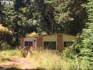 87602 Windward Ln, Bandon, OR 97411 (MLS #19556624) :: Stellar Realty Northwest