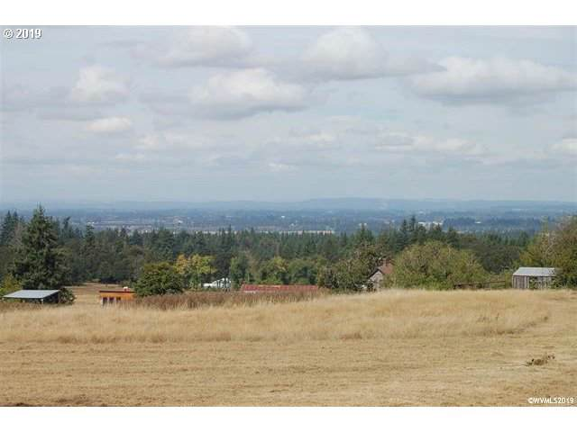 12545 S Wildcat Rd, Molalla, OR 97038 (MLS #19558726) :: McKillion Real Estate Group