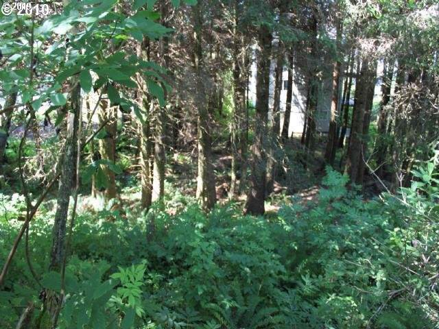 Fifth #7900, Cape Meares, OR 97143 (MLS #19592998) :: Matin Real Estate Group