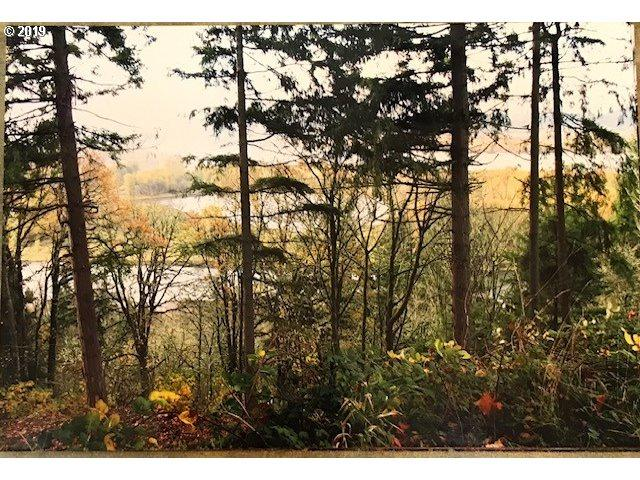 107 Legacy Dr, Woodland, WA 98674 (MLS #19645795) :: R&R Properties of Eugene LLC