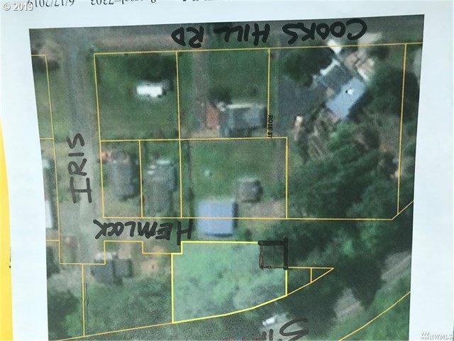 1140 Hemlock St, Ilwaco, WA 98624 (MLS #19693170) :: Homehelper Consultants