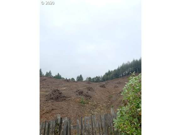 Sylvania, Coquille, OR 97423 (MLS #20013343) :: Beach Loop Realty