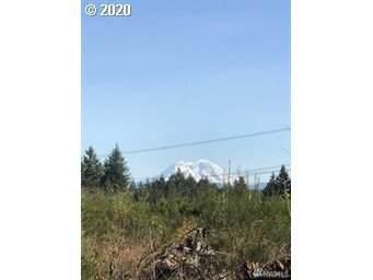 311 Coma Rd, Vader, WA 98593 (MLS #20024914) :: McKillion Real Estate Group