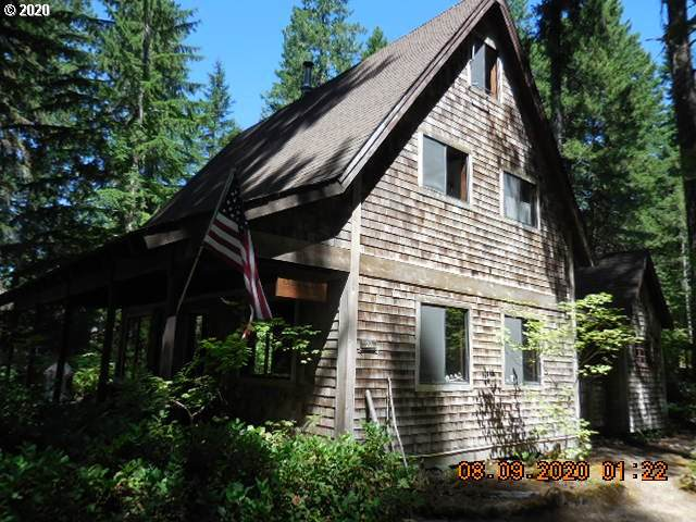 Cabin 72 Northwoods, Cougar, WA 98616 (MLS #20050022) :: Premiere Property Group LLC