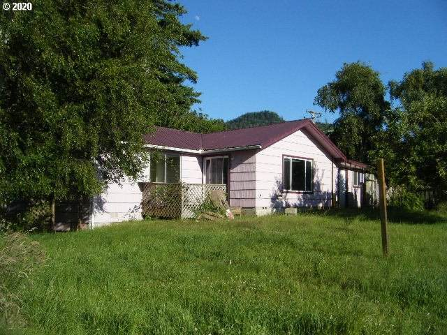 94191 EIGHTH ST, Gold Beach, OR 97444 (MLS #20068969) :: Townsend Jarvis Group Real Estate