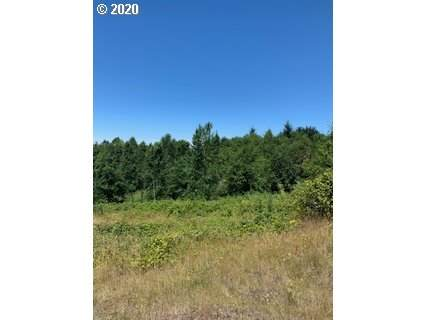 400 Tybren Heights Rd, Kelso, WA 98626 (MLS #20128141) :: Coho Realty