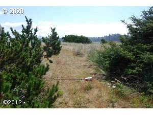 209 NW Alsea Bay Dr, Waldport, OR 97394 (MLS #20132795) :: Townsend Jarvis Group Real Estate