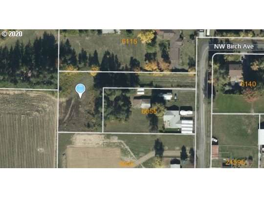 NW Birch, Hillsboro, OR 97124 (MLS #20144913) :: Next Home Realty Connection