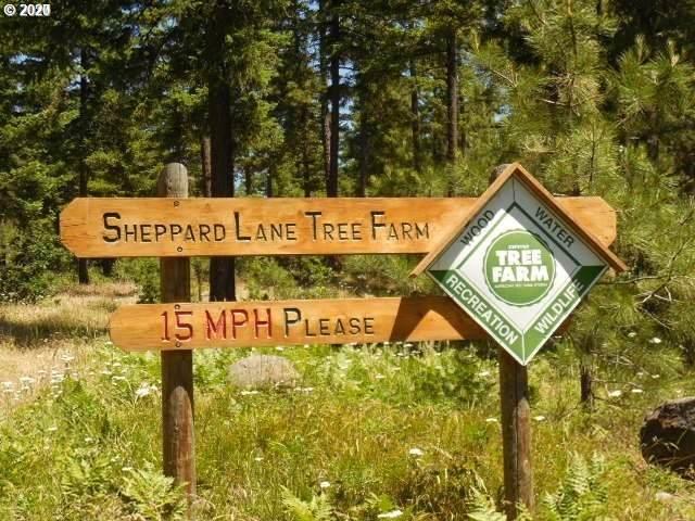 169 Sheppard Ln - Photo 1