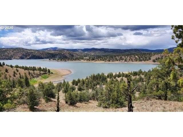 18553 SE Doubtful Dirt Rd, Prineville, OR 97754 (MLS #20194969) :: Premiere Property Group LLC