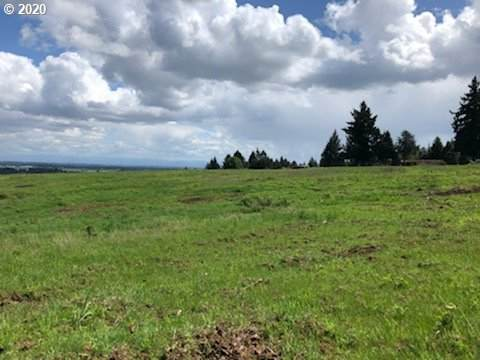 0 Walnut Hill Rd, Amity, OR 97101 (MLS #20261202) :: Song Real Estate