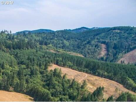0 Little Kalama River Rd, Woodland, WA 98674 (MLS #20276182) :: Next Home Realty Connection