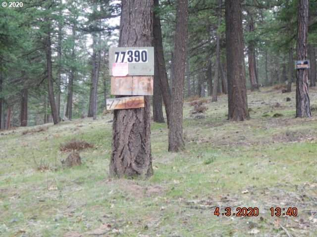 Hwy 216, Maupin, OR 97037 (MLS #20302632) :: Holdhusen Real Estate Group