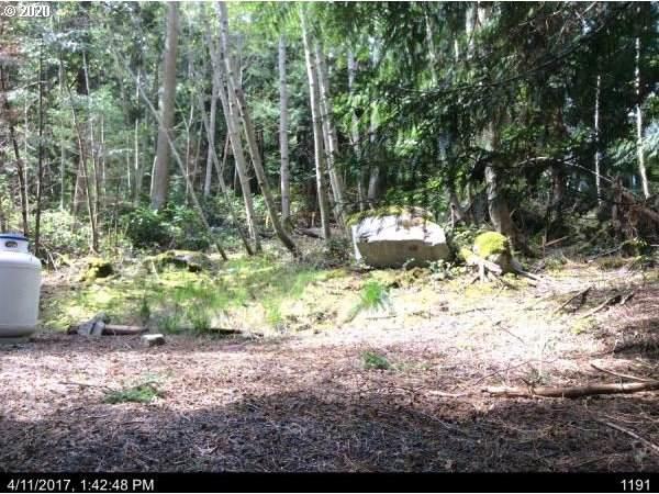 66 Lodgepole Ln, Lopez Island, WA, WA 98261 (MLS #20310530) :: Change Realty