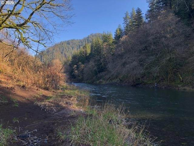 12665 Wilson River Hwy, Tillamook, OR 97141 (MLS #20330697) :: Song Real Estate