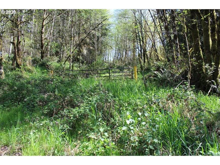 Stewart Creek Rd - Photo 1