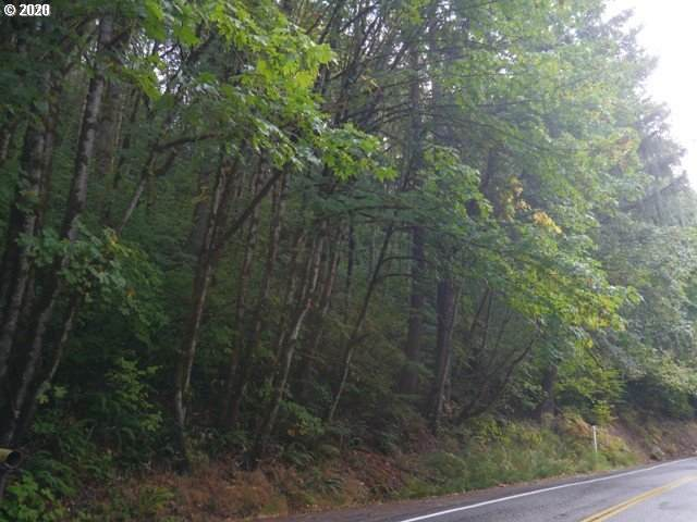 Pittsburg Rd, St. Helens, OR 97051 (MLS #20395270) :: Fox Real Estate Group