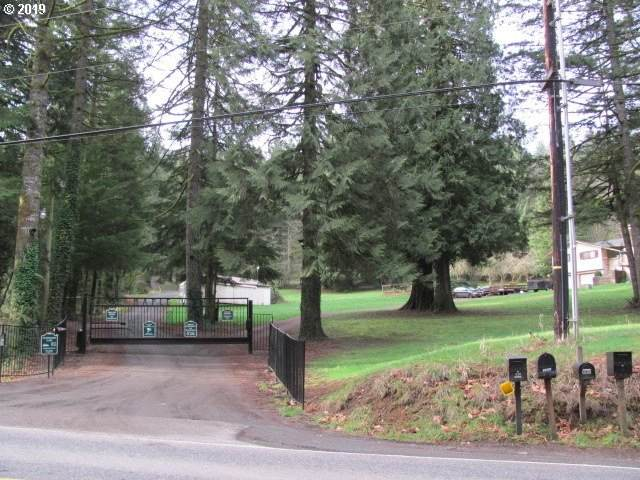 Wildlife Dr, Washougal, WA 98671 (MLS #20442879) :: Next Home Realty Connection