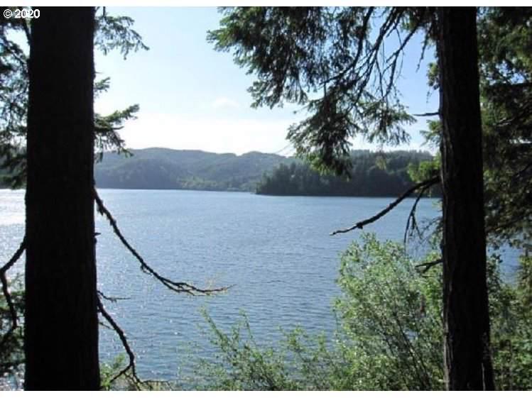 10 Tenmile Lake Rd - Photo 1