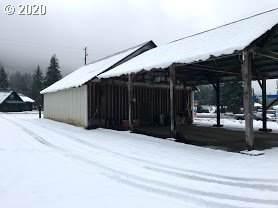 1259 Hwy 141, White Salmon, WA 98672 (MLS #20501195) :: Stellar Realty Northwest