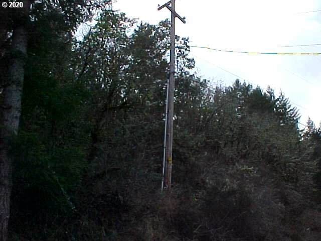 0 South Side Rd - Photo 1